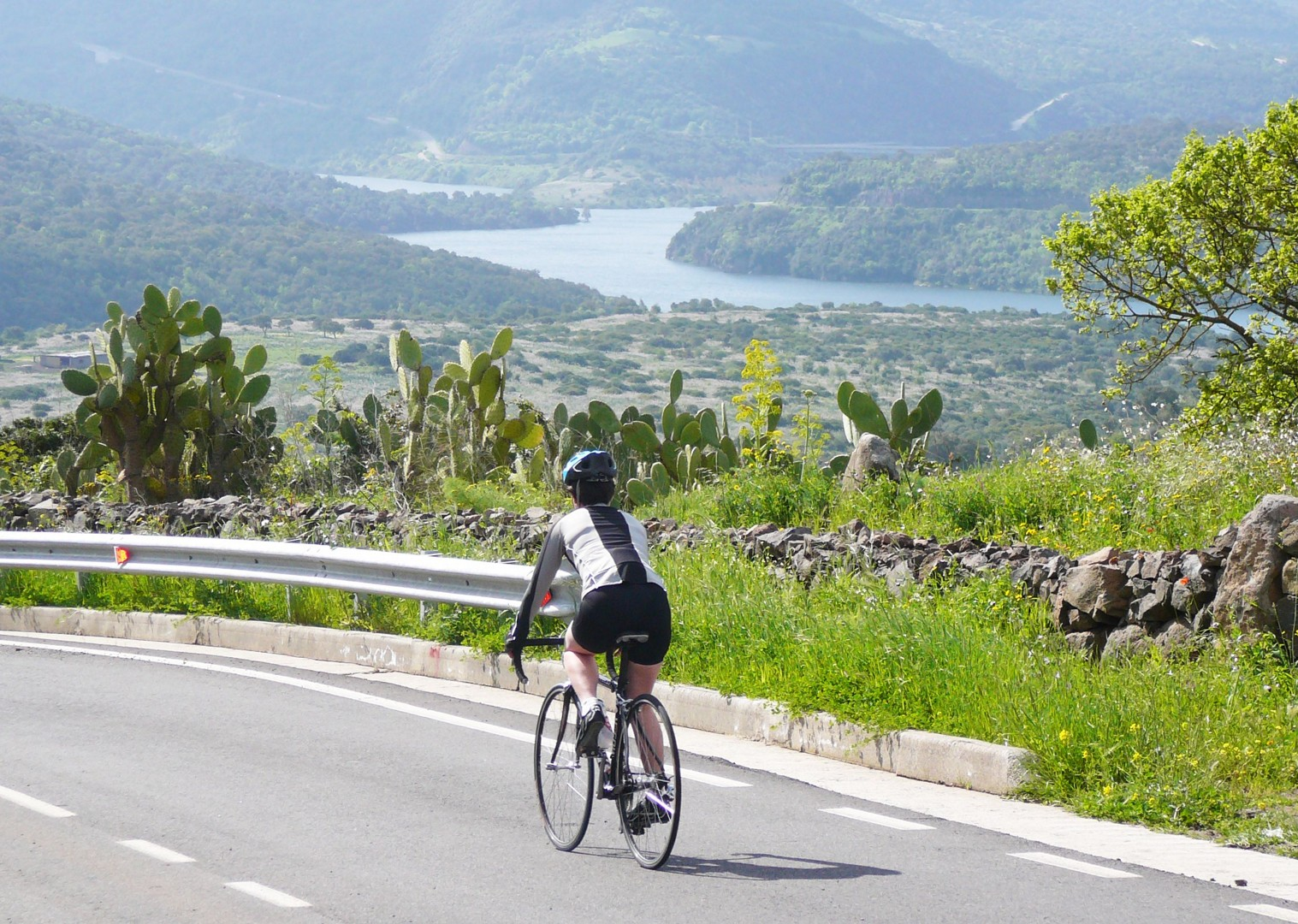Sardinia-Coastal-Explorer-Guided-Road-Cycling-Holiday.JPG - Italy - Sardinia - Coastal Explorer - Road Cycling