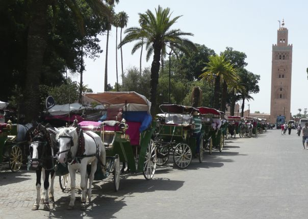 Moroccocyclingholiday8.jpg - Morocco - Road Atlas - Road Cycling