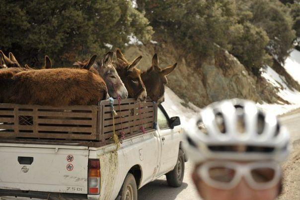skedaddle morocco road atlas 7 - Morocco - Road Atlas - Road Cycling