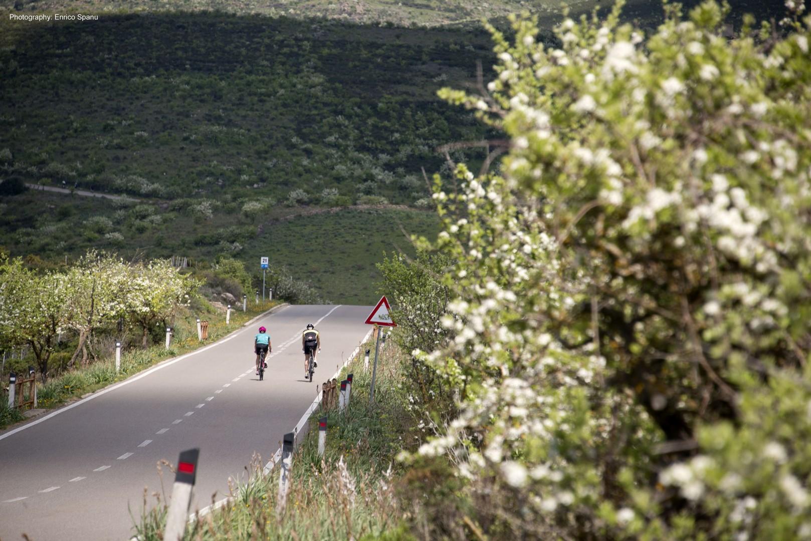 sardiniac2croad.jpg - Italy - Sardinia - Coast to Coast - Self-Guided Road Cycling Holiday - Road Cycling