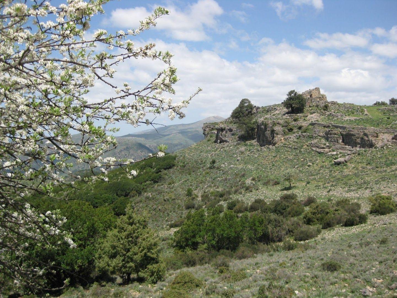 IMG_0144.jpg - Italy - Sardinia - Coast to Coast - Self-Guided Road Cycling Holiday - Road Cycling