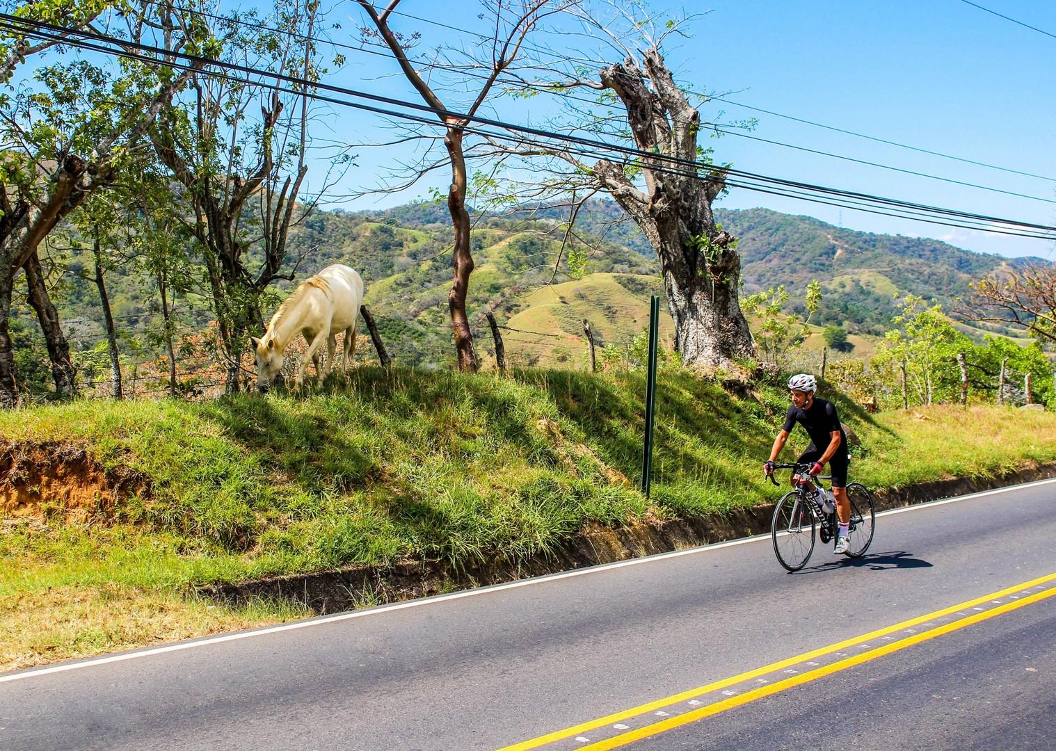 IMG_5487.jpg - Costa Rica - Ruta de los Volcanes - Road Cycling