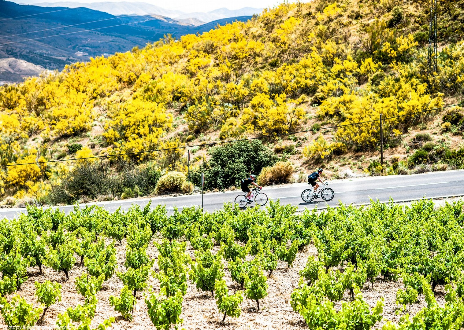 spain-guided-road-cycling-holiday-sierra-nevada-and-granada-trip.jpg - Southern Spain - Sierra Nevada and Granada - Guided Road Cycling Holiday - Road Cycling