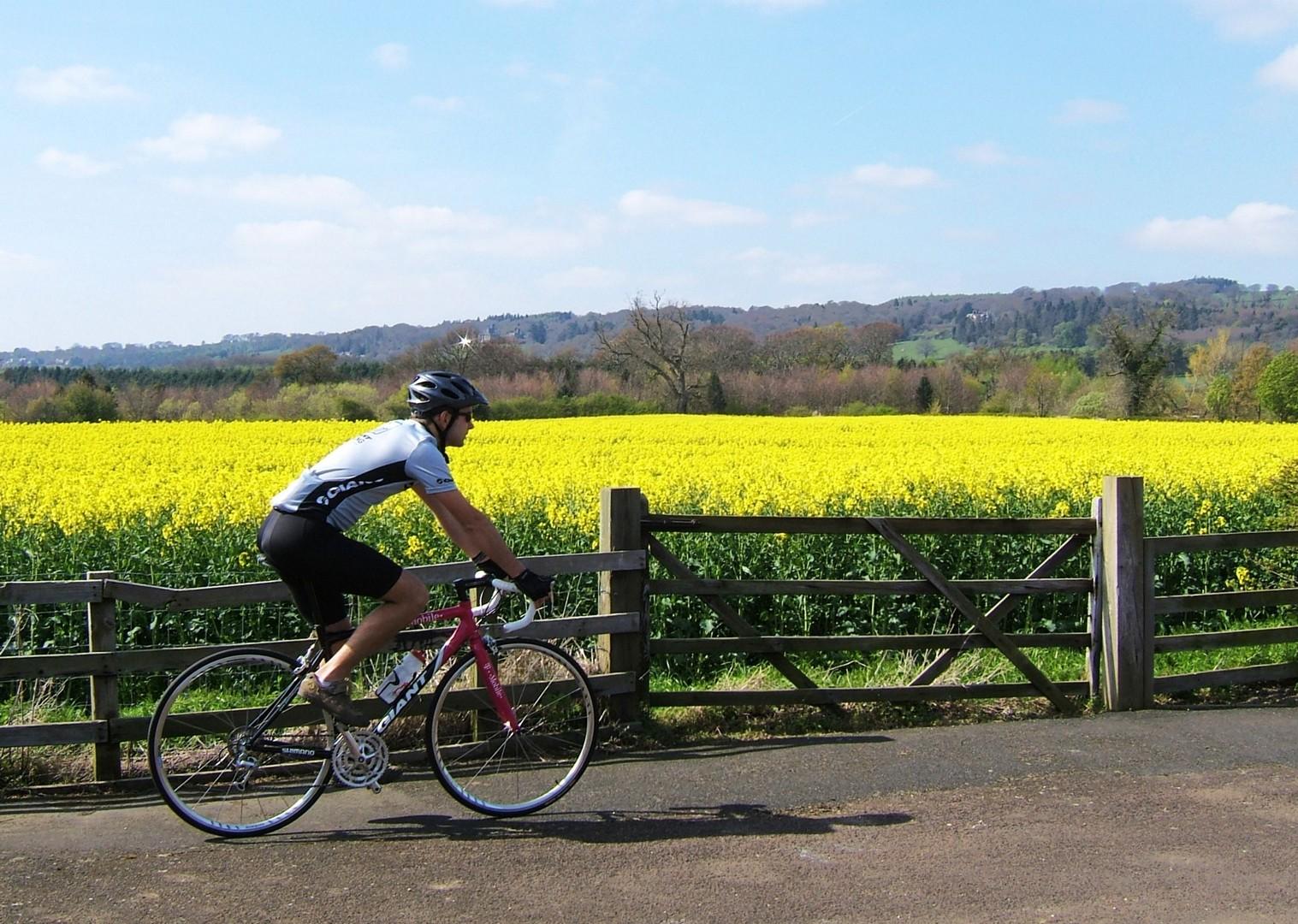 northumberland-uk-road-cycling-weekend.jpg - UK - Northumberland - Road Cycling