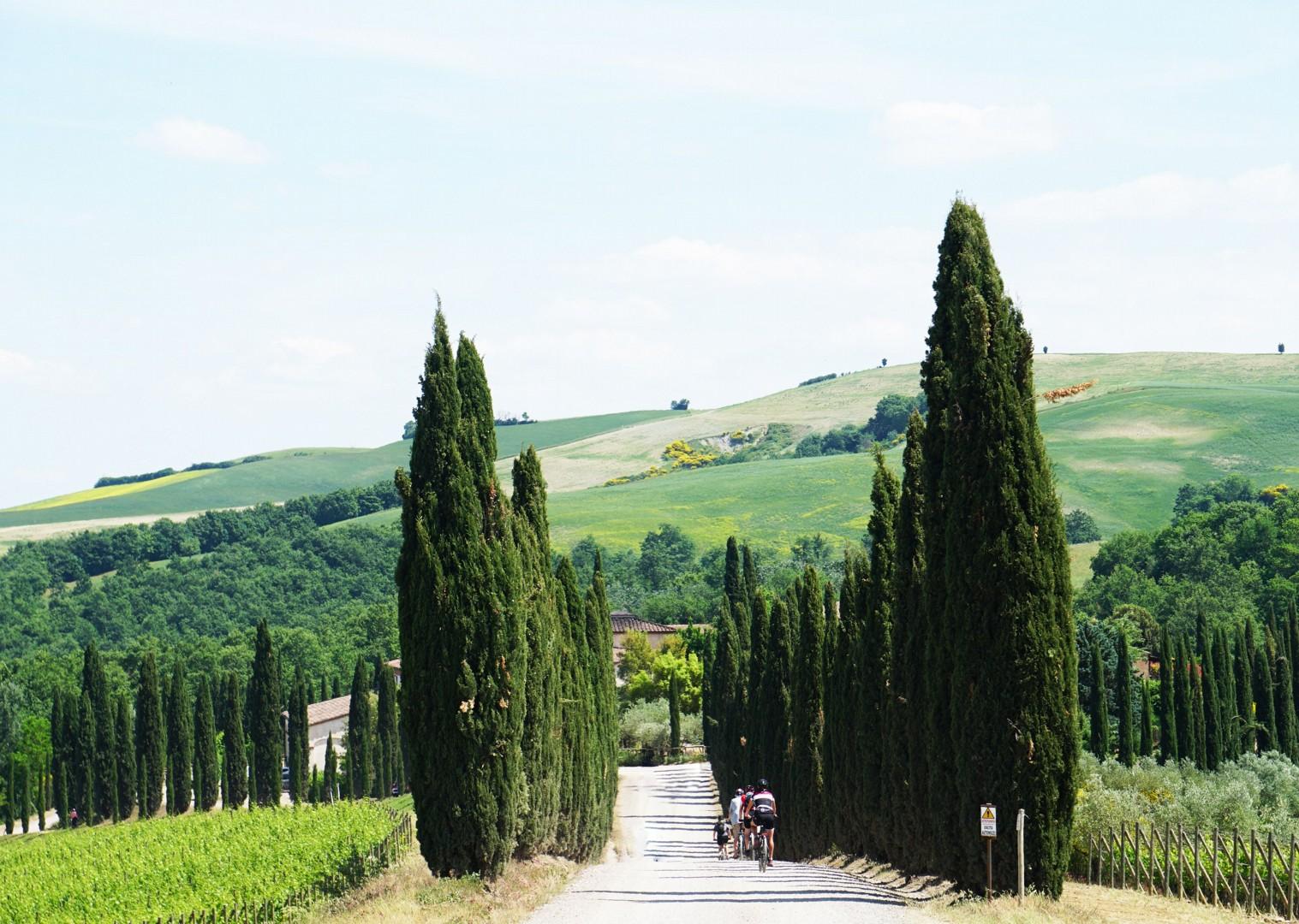 groves-italy-tuscany-cycling-holiday.jpg - Italy - Tuscany Tourer - Guided Road Cycling Holiday - Road Cycling