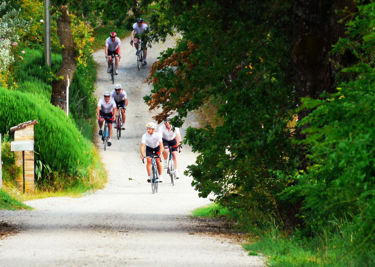 group-guided-cycling-white-roads-italy-tuscany.jpg - Italy - Tuscany Tourer - Guided Road Cycling Holiday - Road Cycling