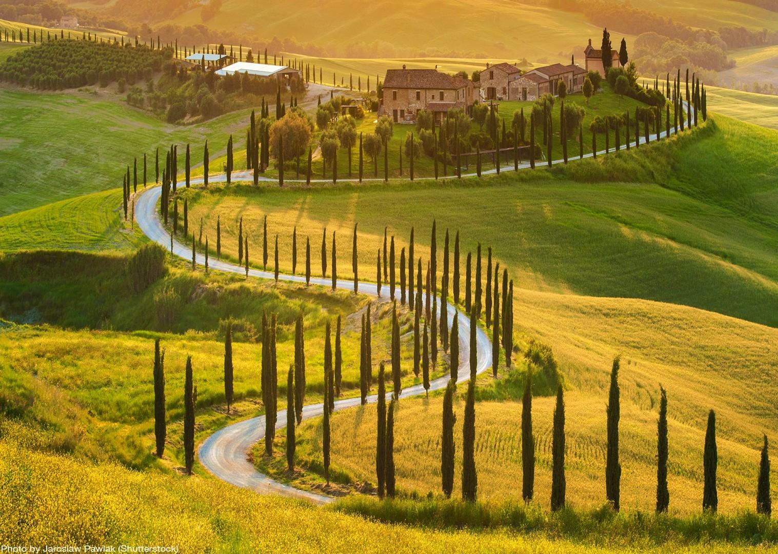 cypress-snakes-tuscany-leisure-bike-tour-self-guided.jpg - Italy - Tuscany - Giro della Toscana - Guided Road Cycling Holiday - Road Cycling