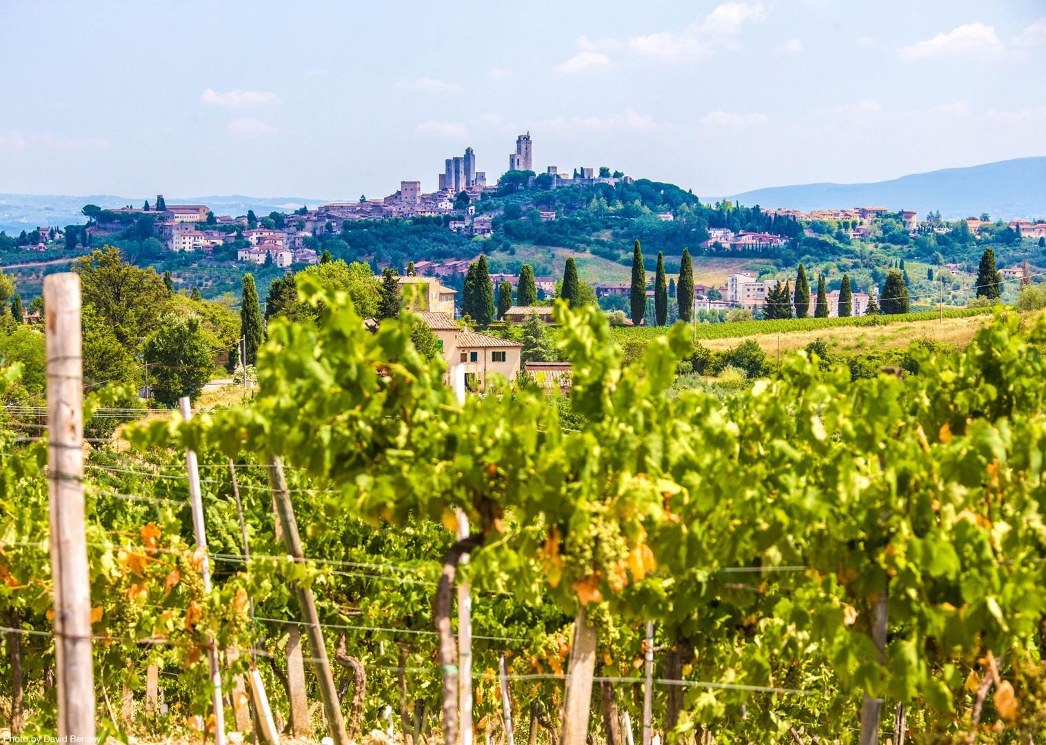 0018 Day 2 San Gimignano.jpg - Italy - Tuscany - Giro della Toscana - Guided Road Cycling Holiday - Road Cycling