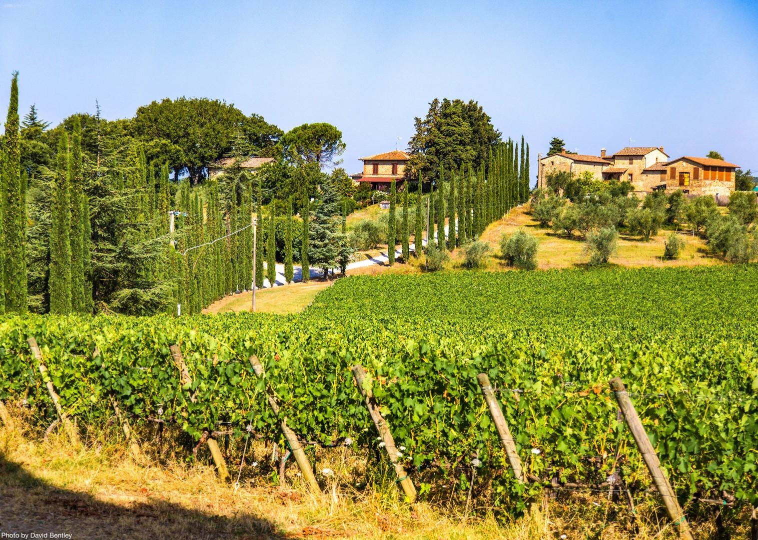 0077 Day 4 Chianti Region.jpg - Italy - Tuscany Tourer - Road Cycling