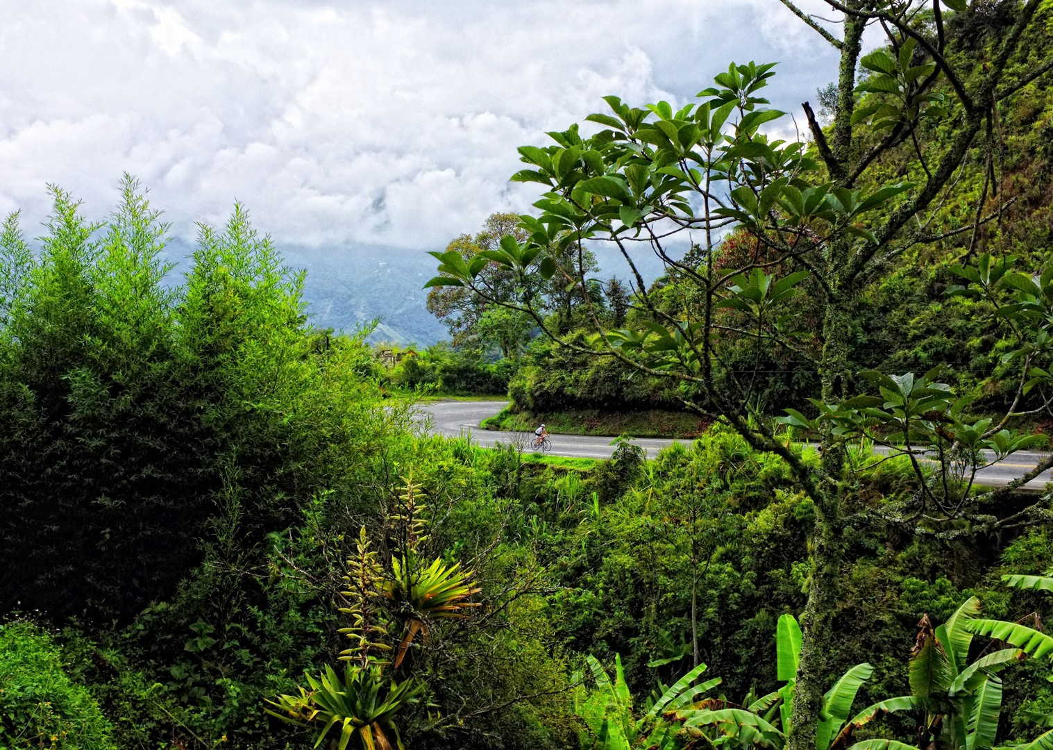 road-cycling-holiday-in-clombia-with-skedaddle.jpg - Colombia - Emerald Mountains - Road Cycling