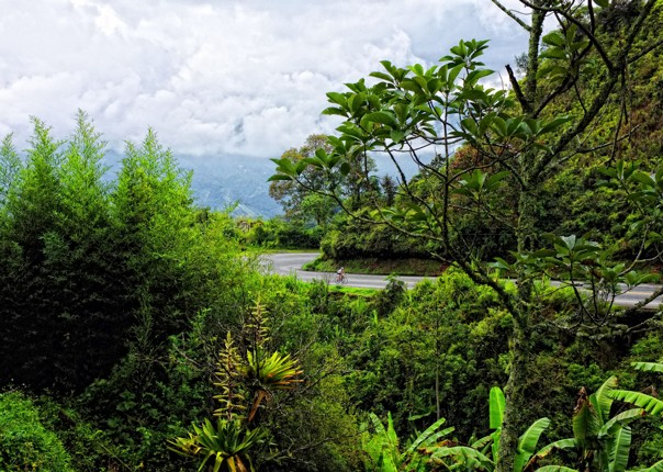 Colombia - Emerald Mountains - Guided Road Cycling Holiday Image