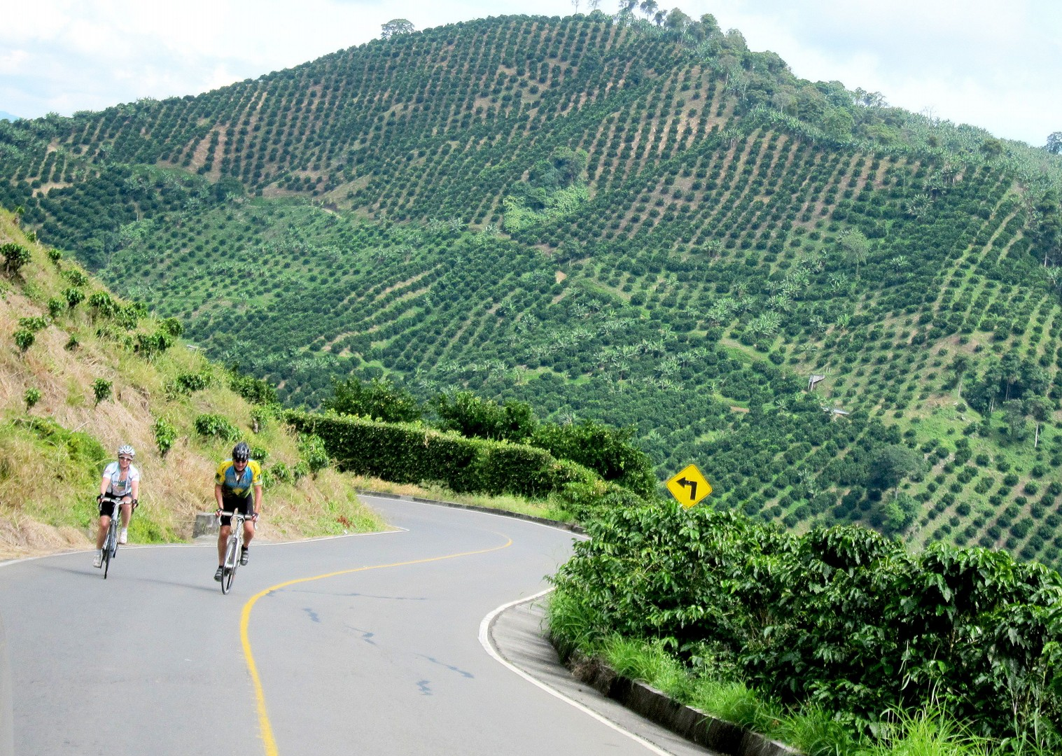 colombia-road-cycling-holiday-skedaddle-alto-de-letras.jpg - Colombia - Emerald Mountains - Road Cycling