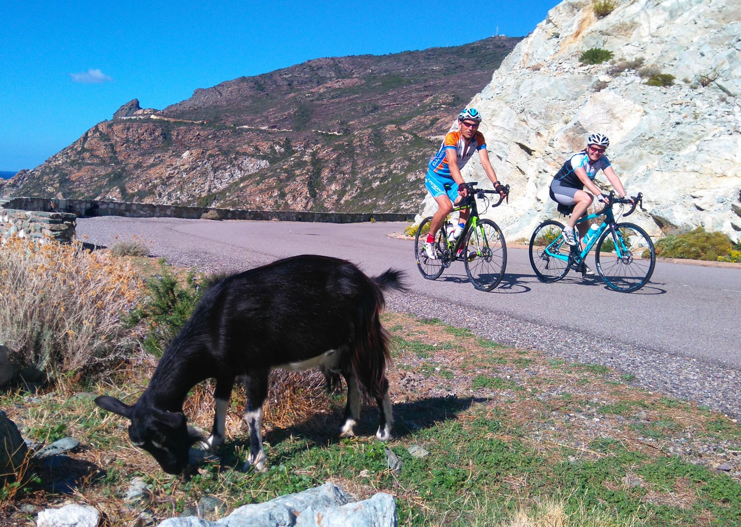 guided-road-cycling-holiday-in-france.jpg - France - Corsica - Southern Secrets - Guided Road Cycling Holiday - Road Cycling
