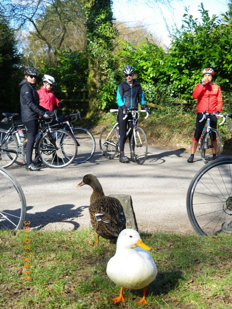 _Customer.33093.9395.jpg - UK - Chilterns - Guided Road Cycling Weekend - Road Cycling