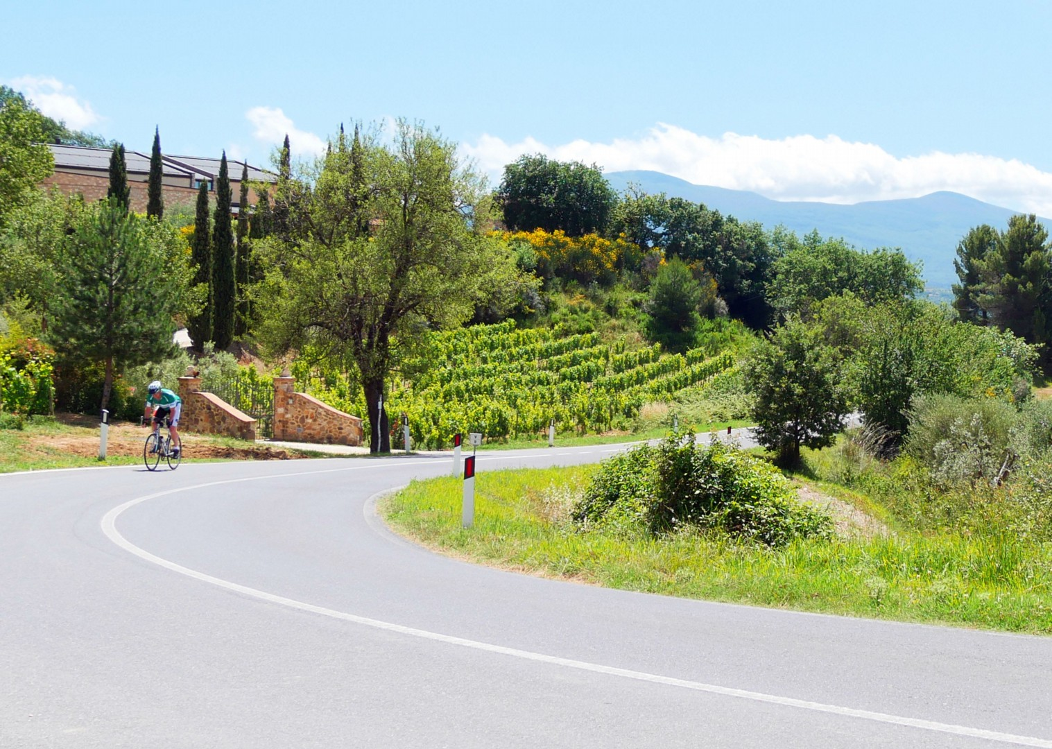 tuscany-tourer-self-guided-road-cycling.jpg - Italy - Tuscany Tourer - Self Guided Road Cycling Holiday - Road Cycling