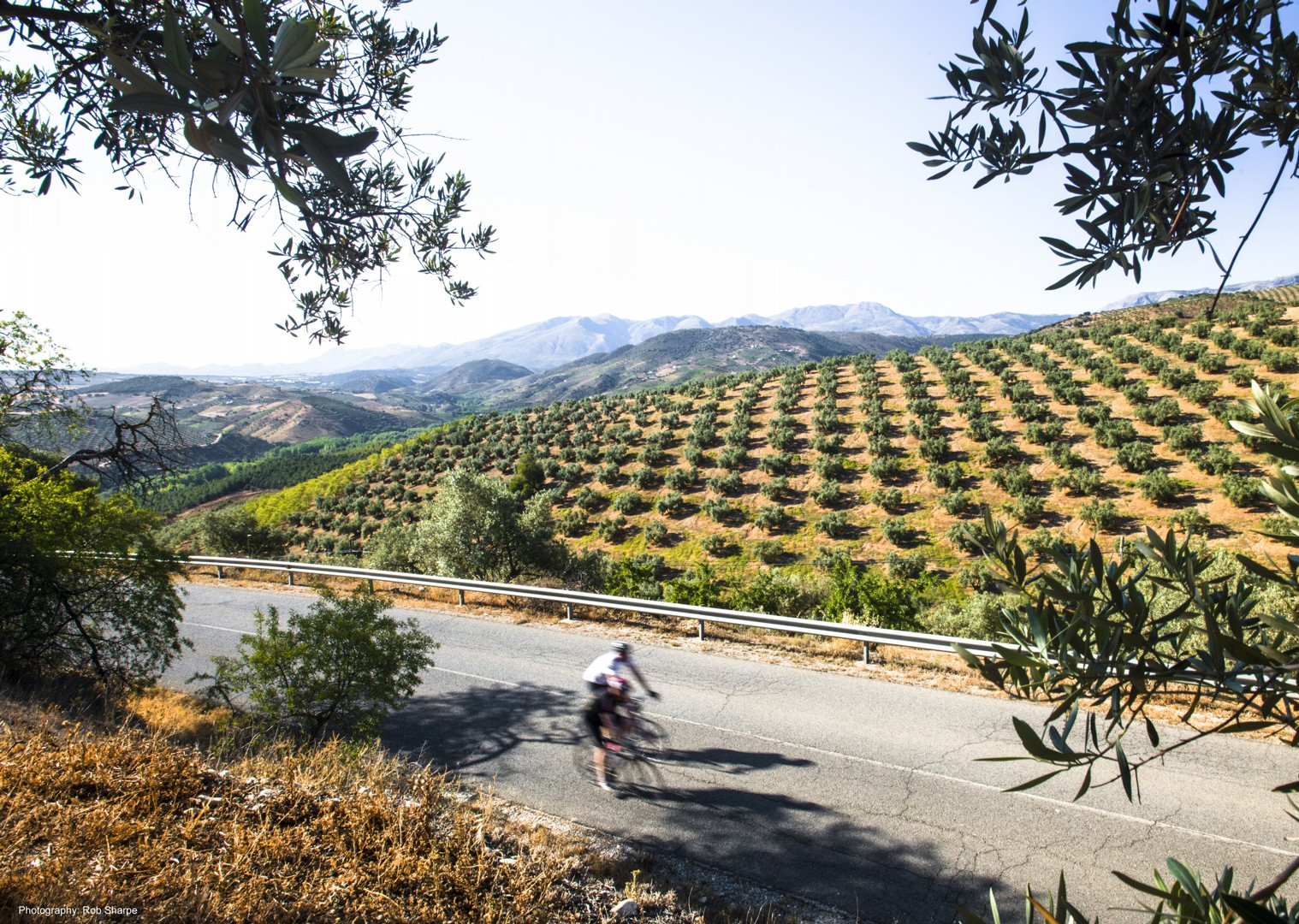 los-pueblos-blancos-andalucia-spain-self-guided-road-cycling-holiday.jpg - Southern Spain - Andalucia - Los Pueblos Blancos - Self-Guided Road Cycling Holiday - Road Cycling