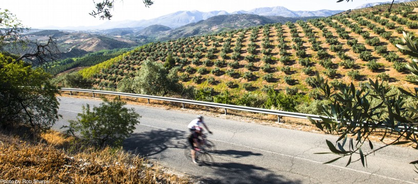 Say hola to Spain! Choose between our Road to Ronda journey for a centre-based holiday or tackle the Los Pueblos Blancos for a ride through the most stunning mountain scenery in western Andalucia.