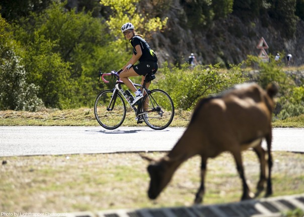 guided-road-cycling-holiday-french-alps.jpg - France - Alps - Mont Ventoux to Alpe d'Huez - Guided Road Cycling Holiday - Road Cycling