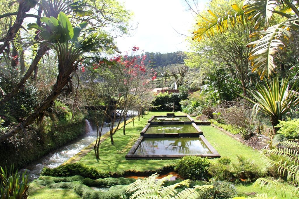 azores road cycling holiday Terra Nostra Park 1.JPG - The Azores - Lakes and Volcanoes - Self-Guided Road Cycling Holiday - Road Cycling