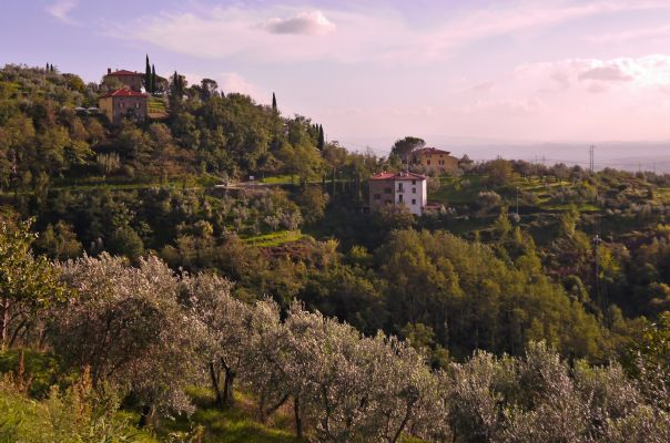 Autumn colours in southern Tuscany.jpg - Italy - Grand Traverse - North to South (17 days) - Guided Road Cycling Holiday - Road Cycling
