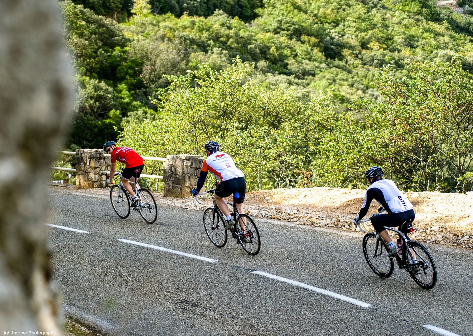 saddle-skedaddle-france-holiday-cyclists-holidays-guided-road-cycling.jpg - France - Ardeche to Carcassonne - Guided Road Cycling Holiday - Road Cycling