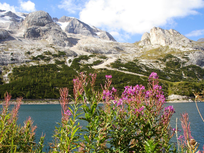 DolomitesRoadCycling59.JPG - Italy - Raid Dolomiti - Guided Road Cycling Holiday - Road Cycling