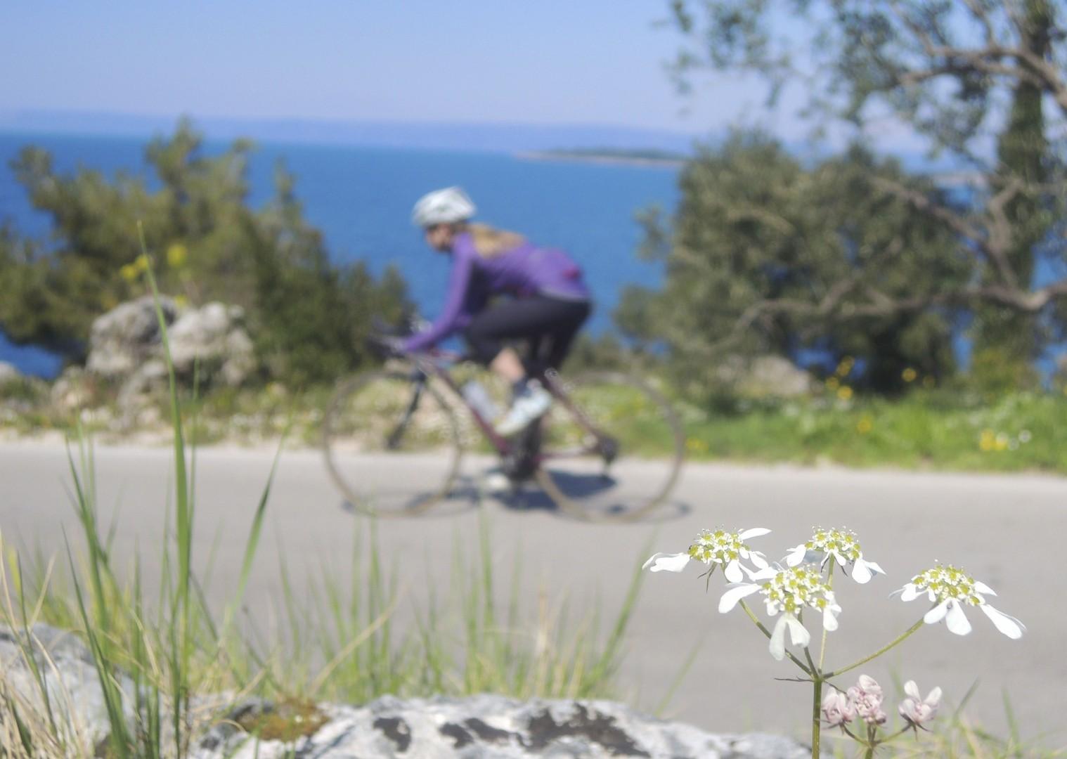 croatiaroad7.jpg - Slovenia and Croatia - Slovenian Alps to Dalmatian Coast - Guided Road Cycling Holiday - Road Cycling