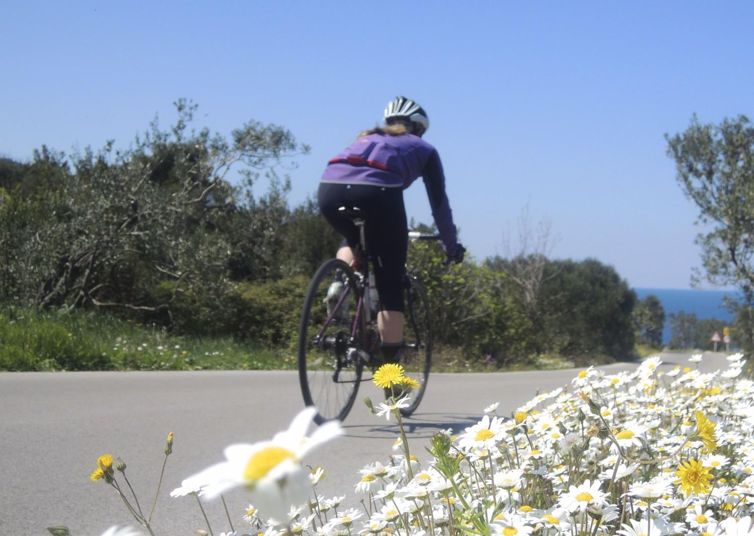 croatiaroad12.jpg - Slovenia and Croatia - Slovenian Alps to Dalmatian Coast - Guided Road Cycling Holiday - Road Cycling