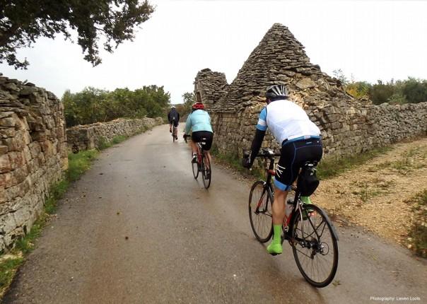 road-cycling-holiday-italy-puglia-alberello_edited-1.jpg - Italy - Puglia - The Heel of Italy - Guided Road Cycling Holiday - Road Cycling