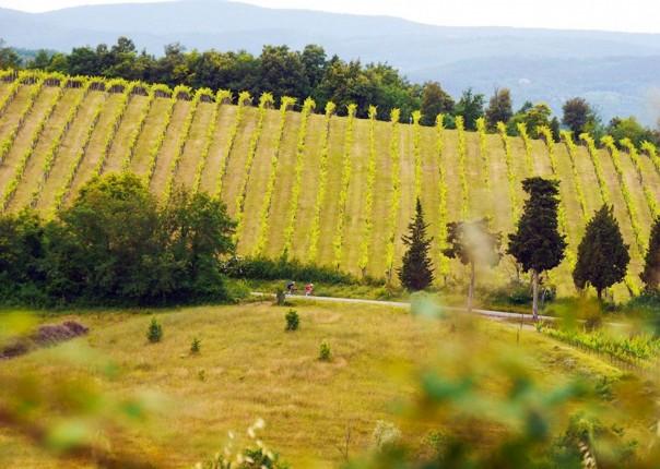 cycling-holiday-tuscany 17.jpg - Italy - Grand Traverse - South to North (22 days) - Guided Road Cycling Holiday - Road Cycling