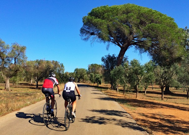 Phil & Fiona and the Roman pine.jpg - Italy - Grand Traverse - South to North (22 days) - Guided Road Cycling Holiday - Road Cycling