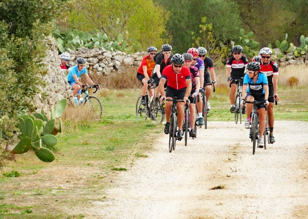 Riding through the olive groves at Masseria Cocciola.jpg - Italy - Grand Traverse - South to North (22 days) - Guided Road Cycling Holiday - Road Cycling