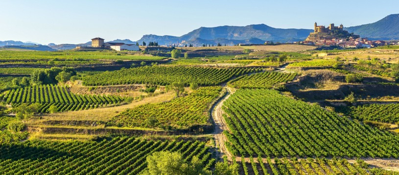Come and discover this Spanish cycling gem and world-renowned region where people live and breathe wine. Cycle through Mediterranean forests, beautiful mountain scenery, medieval towns and endless vineyards!