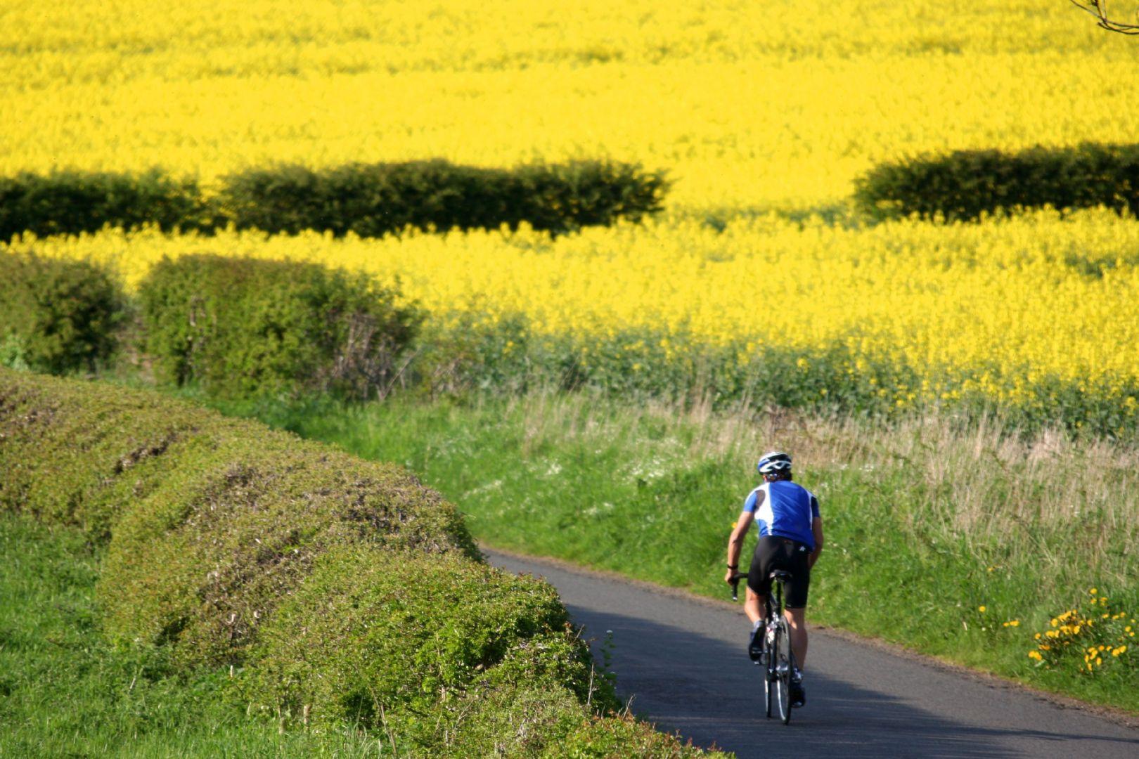 Northumberland Road Cycling Weekend 32.JPG - UK - C2C - Coast to Coast 2 Days Cycling - Self-Guided Road Cycling Holiday - Road Cycling
