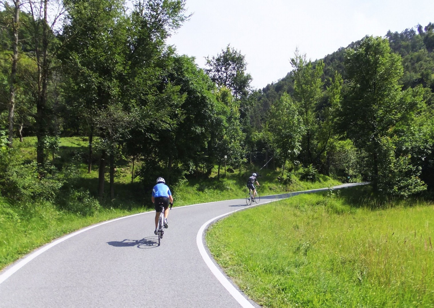 vineyards-italy-piemonte-la-strada-del-vino-guided-road-cycling-holiday.jpg - NEW! Italy - Piemonte - La Strada del Vino - Road Cycling