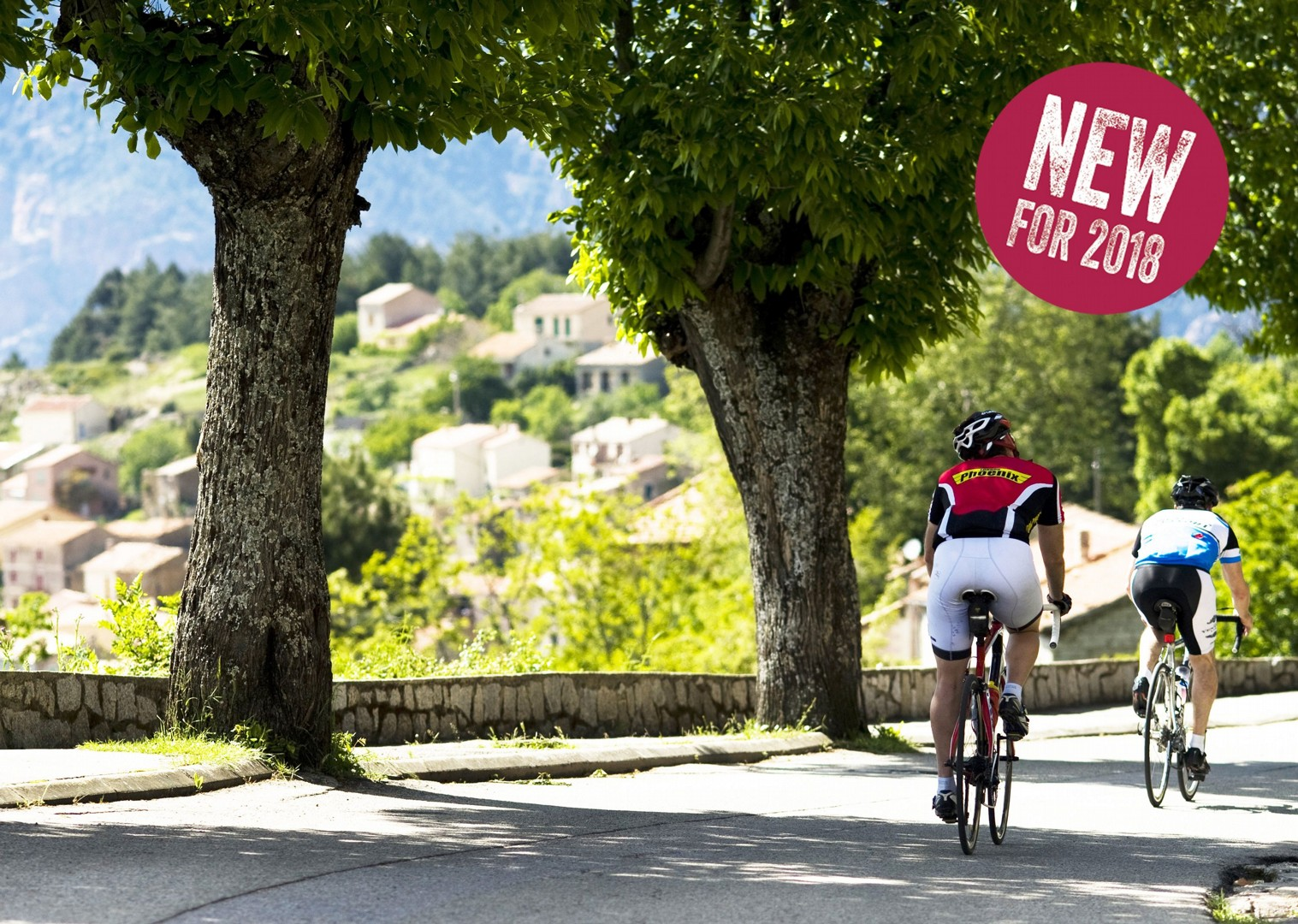 italy-piemonte-la-strada-del-vino-guided-road-cycling-holiday.jpg - NEW! Italy - Piemonte - La Strada del Vino - Road Cycling