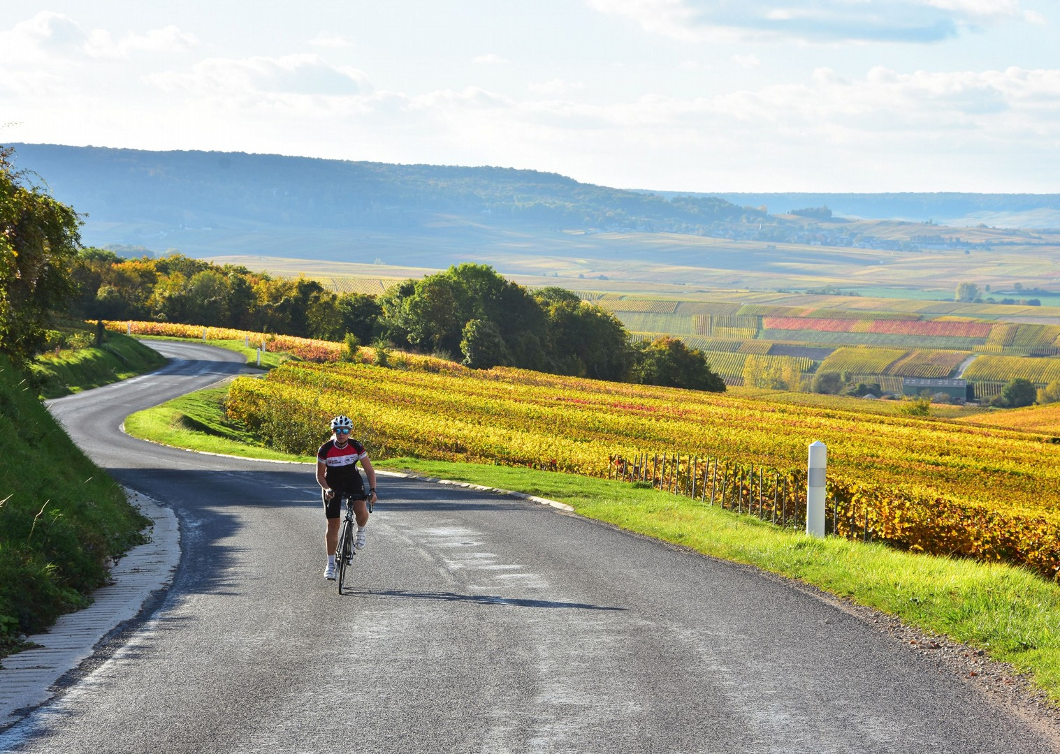 bordeaux-guided-road-cycling-holiday-belgium-and-france-bruges-to-bordeaux.JPG - Belgium and France - Bruges to Bordeaux - Guided Road Cycling Holiday - Road Cycling