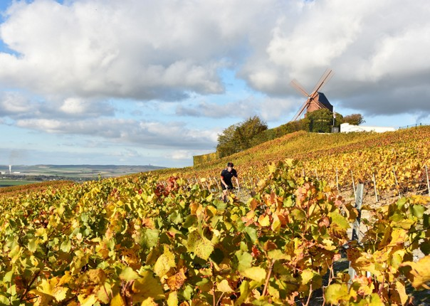 belgium-and-france-guided-road-cycling-holiday.JPG - Belgium and France - Bruges to Bordeaux - Guided Road Cycling Holiday - Road Cycling