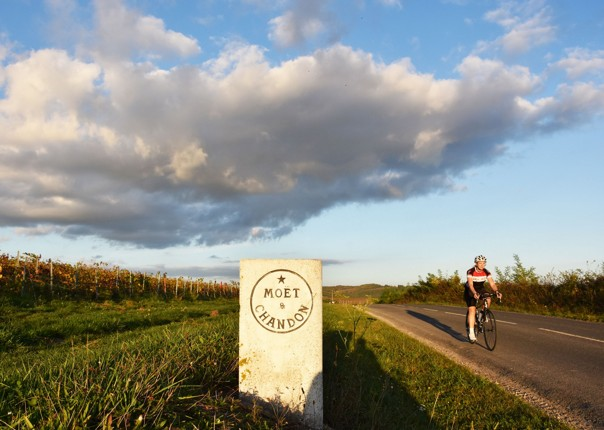 koppenberg-iconic-journeys-bruges-to-bordeaux-guided-road-cycling-holiday.JPG - Belgium and France - Bruges to Bordeaux - Guided Road Cycling Holiday - Road Cycling