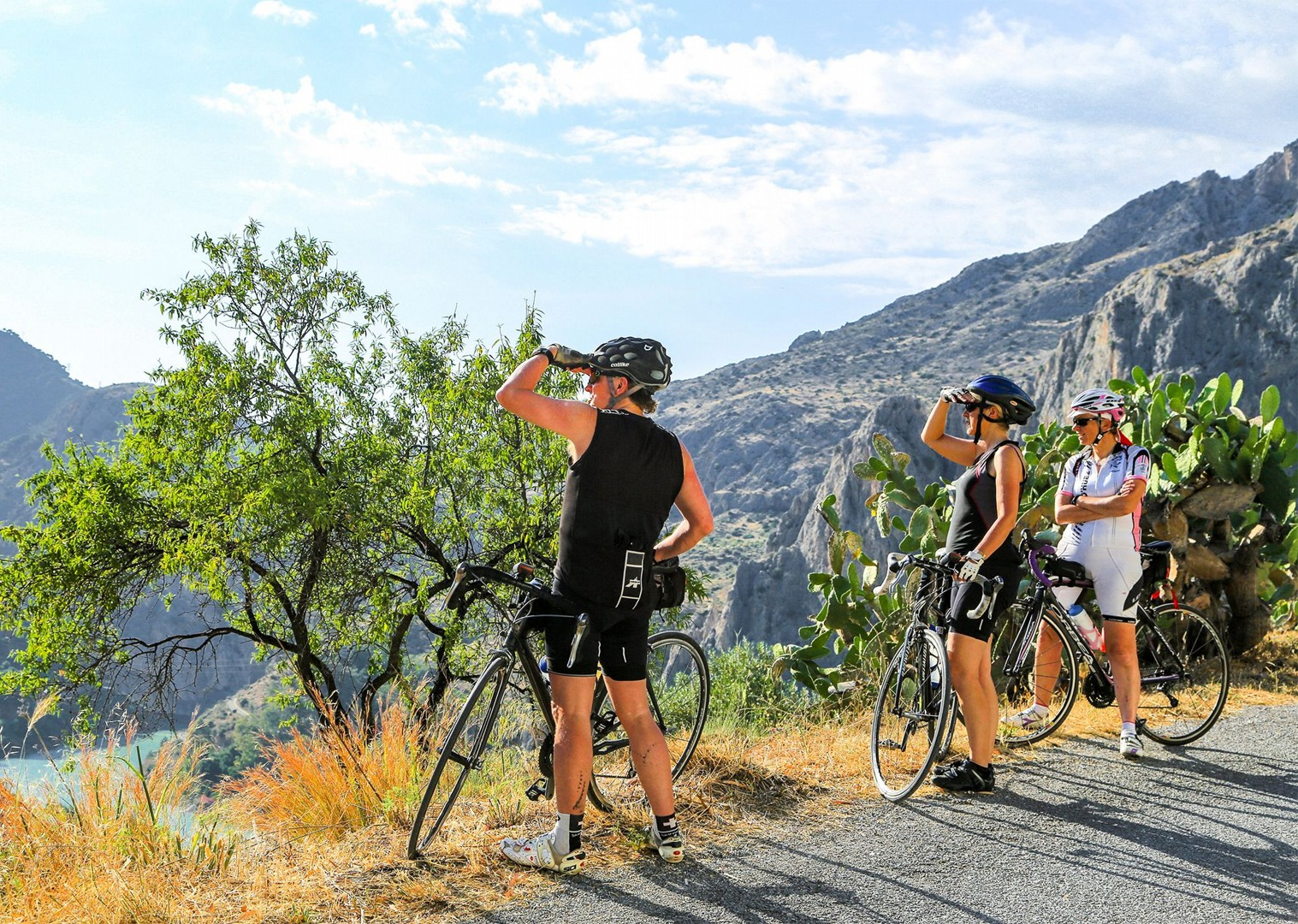 guided-road-cycling-spain-holiday-riding-north-to-south-saddle-skedaddle.jpg - Spain - Basque Country to Andalucia - North to South (21 Days) - Guided Road Cycling Holiday - Road Cycling