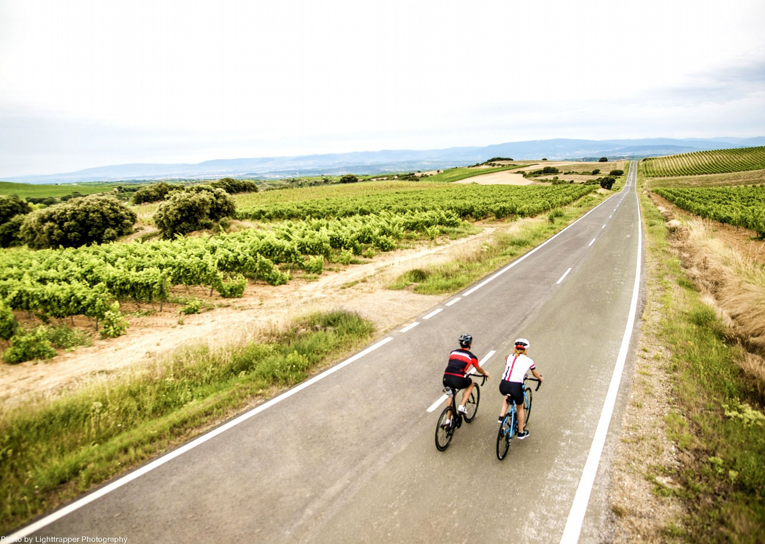 vineyard-spain-rioja-holiday-on-bike-skedaddle.jpg - Northern Spain - La Rioja - Ruta del Vino - Self-Guided Road Cycling Holiday - Road Cycling