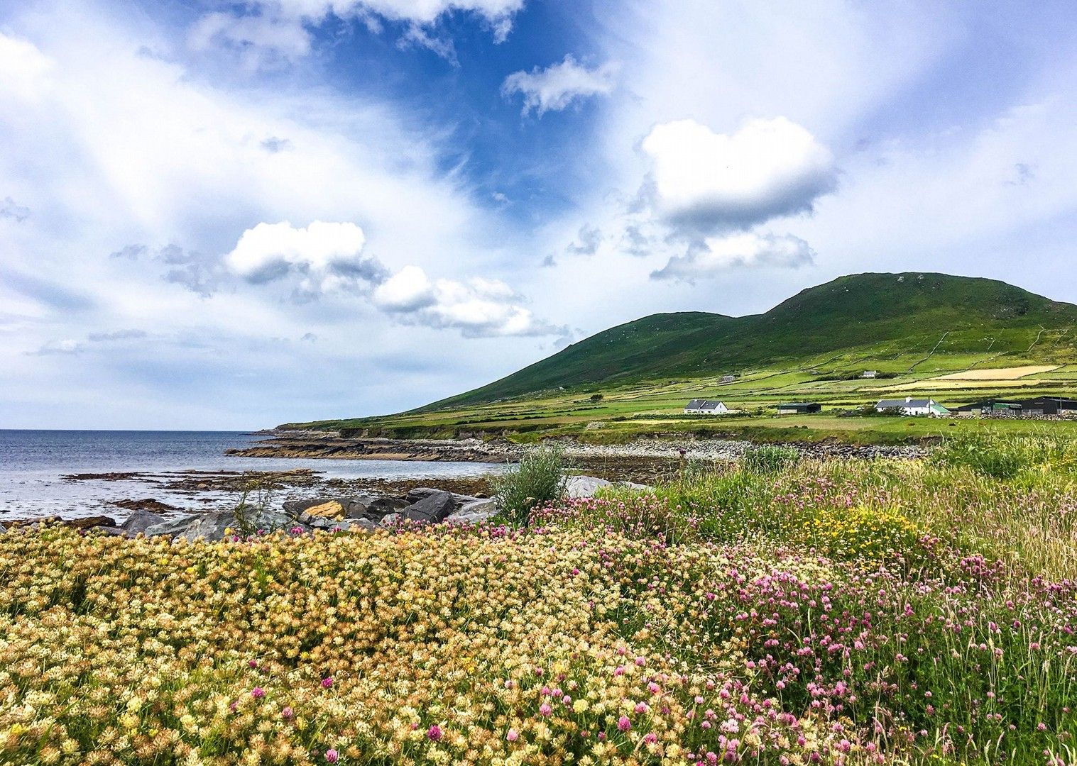 irish-coast-kerry-self-guided-leisure-cycling-holidays-saddle-skedaddle-ireland.jpg - Ireland - Highlights of Kerry - Self-Guided Leisure Cycling Holiday - Leisure Cycling