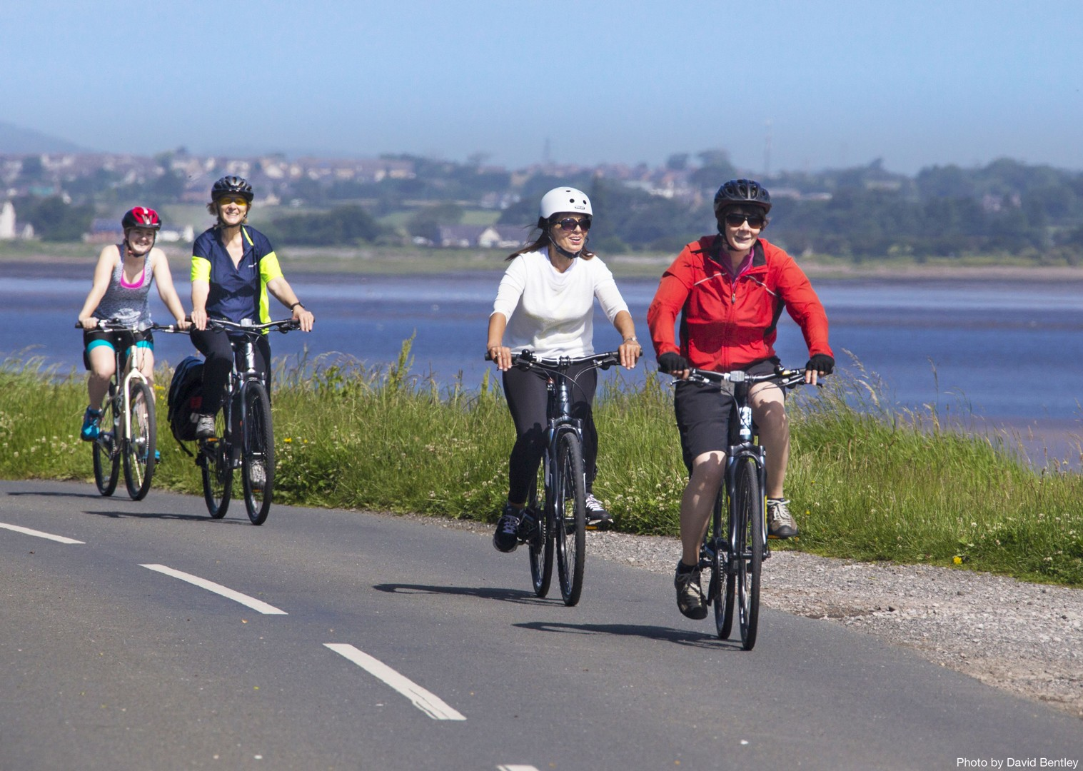 Hadrians-Cycleway-Sycamore-Gap-Supported-Leisure-Cycling-Holiday.jpg - UK - Hadrian's Cycleway - Supported Leisure Cycling Holiday - Leisure Cycling