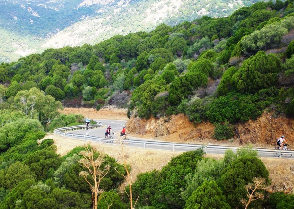cycling-holiday-self-guided-italy.jpg - Italy - Sardinia - Island Flavours - Self-Guided Leisure Cycling Holiday - Leisure Cycling