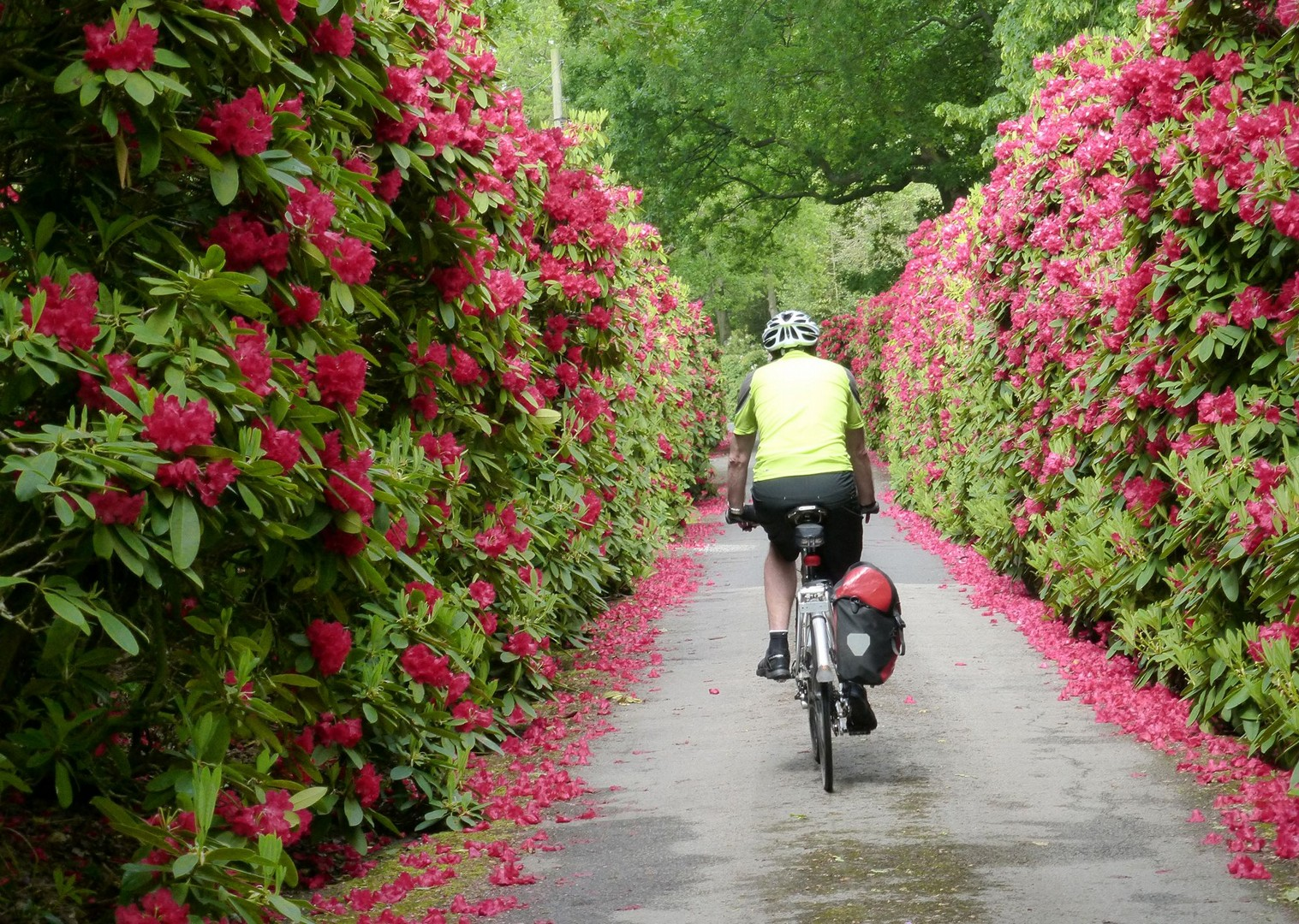 cycling-holiday-sustrans-end-to-end.jpg - UK - Land's End to John O'Groats Explorer (22 days) - Guided Cycling Holiday - Leisure Cycling