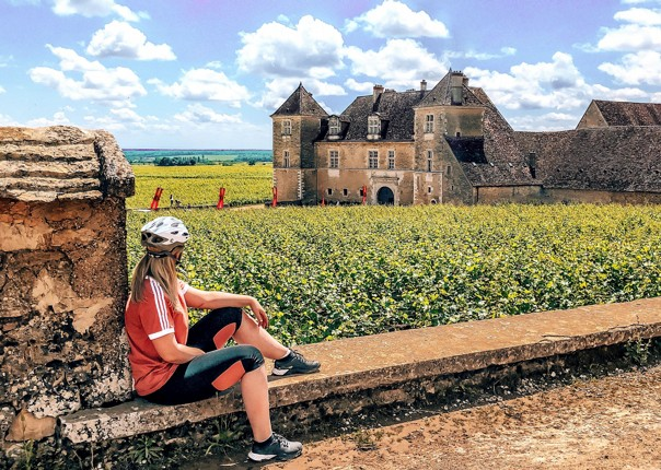 France - Vintage Burgundy - Self-Guided Leisure Cycling Holiday Image
