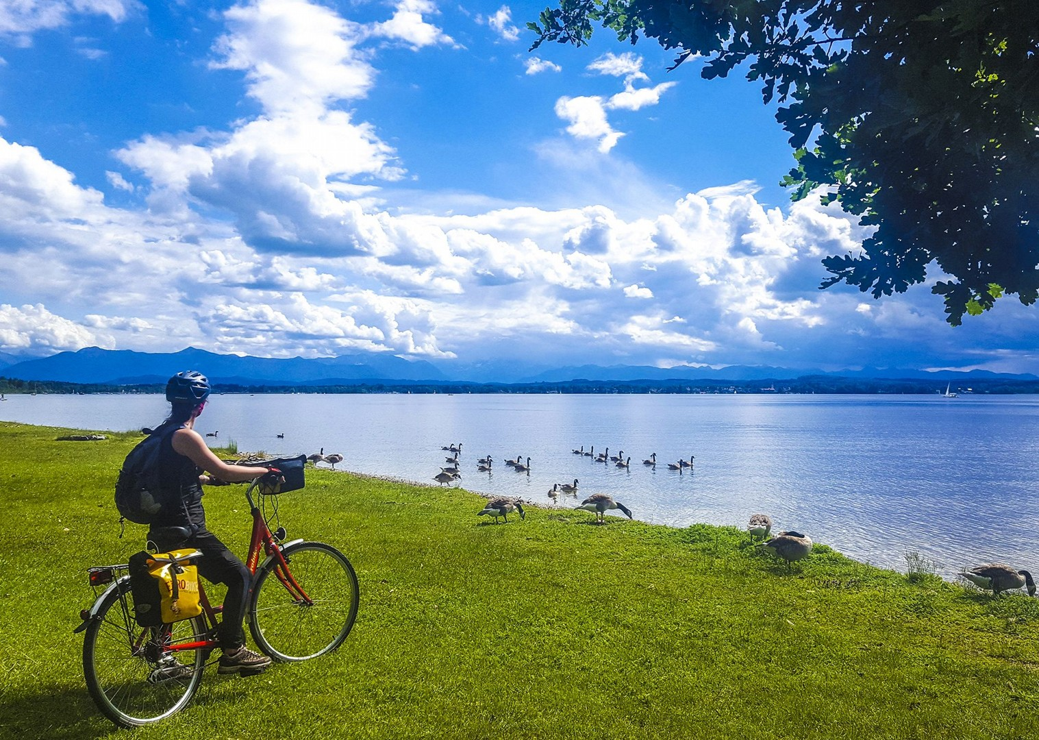 bavarian-lakes-cycling-tour-self-guided-wildlife-beautiful-experience-culture.jpg - Germany - Bavarian Lakes - Self-Guided Leisure Cycling Holiday - Leisure Cycling