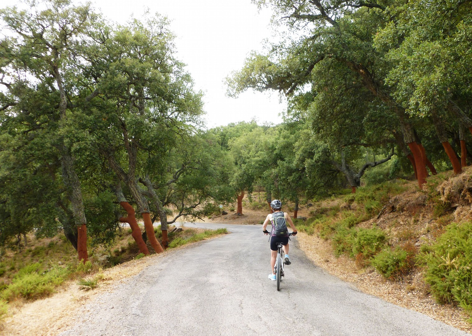 cycling-holiday-in-spain-sierras-to-the-sea.jpg - Southern Spain - Sierras to the Sea - Self-Guided Leisure Cycling Holiday - Leisure Cycling