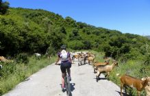 Southern Spain - White Villages of Andalucia - Self-Guided Leisure Cycling Holiday Image