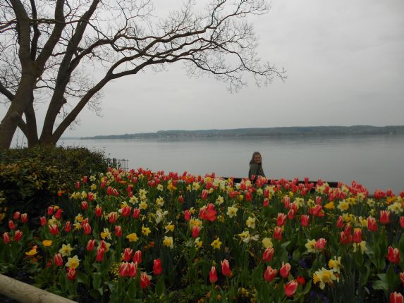 _Customer.82312.10161.jpg - Germany, Austria and Switzerland - Lake Constance - Self-Guided Leisure Cycling Holiday - Leisure Cycling